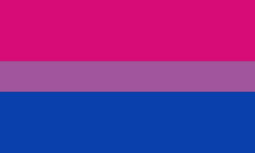Journée de la bisexualité