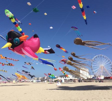 Journée mondiale du cerf-volant