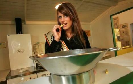 Journée internationale de la frite belge