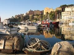 Journée mondiale de la Corse