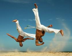 Journée Mondiale du Capoeiriste