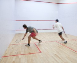 Journée internationale du squash